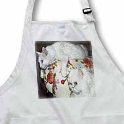 Van Cat and Persian Cat - cats, white cats, turkish van cat, persian, chinchilla, persian chinchilla Apron