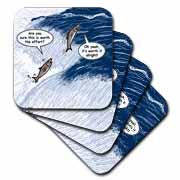 Salmon Spawning Advice Coaster