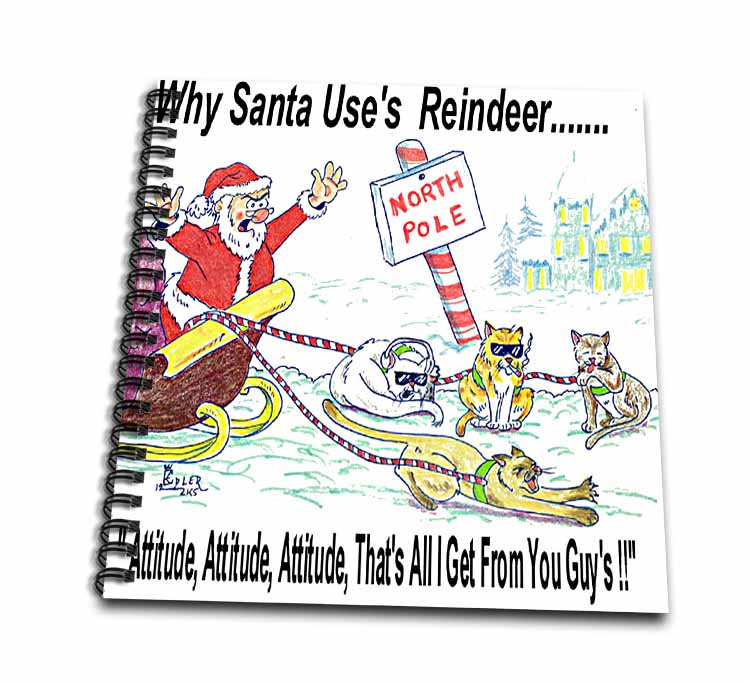 Kevin Edler, Why Santa Uses Reindeer  Drawing Book