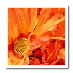 Bright orange Flowers Iron on Heat Transfer