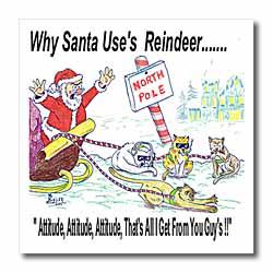 Kevin Edler, Why Santa Uses Reindeer  Iron on Heat Transfer