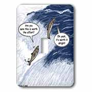 Salmon Spawning Advice Light Switch Cover