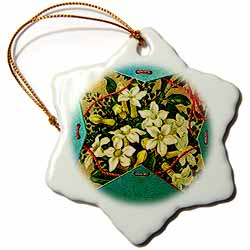 Image White Flower Bouquet in Green Blue Christmas Box with Red Twine Ornament