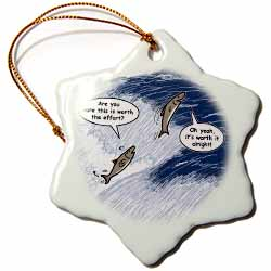 Salmon Spawning Advice Ornament