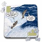 Salmon Spawning Advice Puzzle