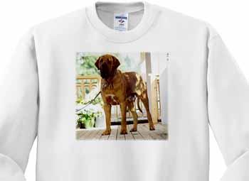 Brazilian Fila Sweatshirt
