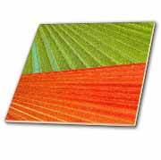 Green Orange Palm Leaves Tile
