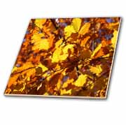 Autumn Leaves  Tile