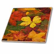 Rustic Autumn Leaves  Tile