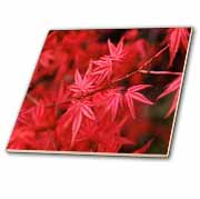 Vibrant Red Leaves  Tile
