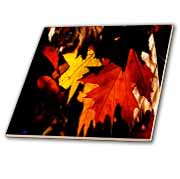 Yellow and Orange Autumn Leaves  Tile