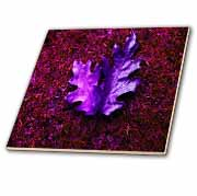 Pink and Purple Leaf Carpet  Tile
