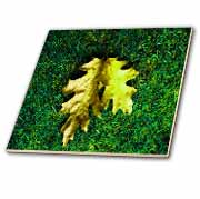 Gold and Green Leaf Carpet  Tile