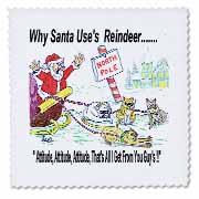 Kevin Edler, Why Santa Uses Reindeer  Quilt Square