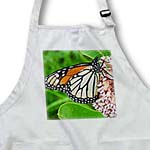 click on Monarch Butterfly and Milkweed by Angelandspot to enlarge!