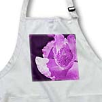 click on Purple Poppy by Angelandspot to enlarge!