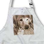 click on Golden Retriever by Angelandspot to enlarge!