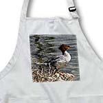 click on Common Merganser or Gooseander to enlarge!