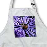 click on Purple New England Aster with Bee to enlarge!