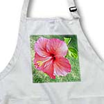 click on Beautiful Large Hibiscus to enlarge!