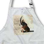 click on South African Sable antelope to enlarge!
