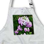 click on Pink and White Phlox Flowers Pink and White Flowers to enlarge!