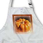 click on Warm Orange Framed Pumpkin- Autumn Photography to enlarge!