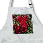 click on Red Garden Roses to enlarge!