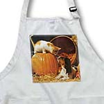 click on Kitten, Puppy and Pumpkin on Canvas to enlarge!