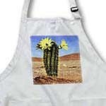 click on Desert Cactus to enlarge!
