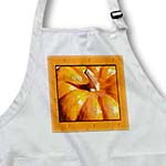 click on Orange Framed Pumpkin- Autumn Photography- Vegetables to enlarge!