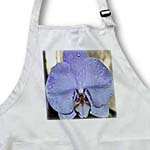click on Lavender Orchid Print to enlarge!