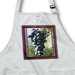 click on Purple Grapes With Burgundy Frame to enlarge!