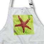 click on Red and Green Ceramic Starfish to enlarge!