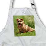 click on Norfolk Terrier to enlarge!