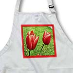 click on Red Tulips On Grass With Red Frame to enlarge!