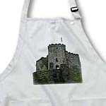 click on The Carlow Castle in County Carlow Ireland Textured to enlarge!