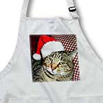 click on Cat Santa to enlarge!
