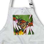 click on Monarch Butterflies to enlarge!