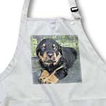 click on Puppy Face - rottweiler, rottweilers, rottie, rottie owner, rottweiler puppy, rottweiler puppies to enlarge!