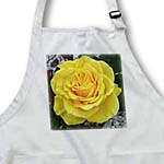 click on Yellow Rose - rose, roses, yellow rose, yellow roses, birth flowerjune, joy, friendship to enlarge!