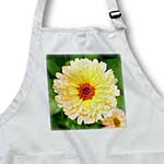 click on Goldbloom - flower, asteraceae, birth flower, calendula, flowers, marigold, yellow to enlarge!