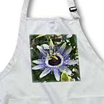 click on Easters Thorn - passion flower, purple, nature, passiflora, wildflower of tennessee, christs thorn to enlarge!