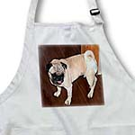 click on Tan and White Pet Pug Walking Around in Diapers So Cute It Makes You Laugh to enlarge!