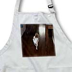 click on Pet Pug Doggie Walking Away Wearing Its Baby Diaper on Hard Wood Floors to enlarge!