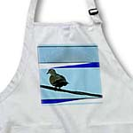 click on Big Bird on Electrical Wire With Azure Sky Behind and Blue and White Stripes to Add Interest to enlarge!