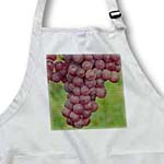click on Purple Grapes on the Vine - Fresh Fruit to enlarge!