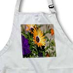 click on Spring Flowers Sunset Colors Violet Petunia Orange Gerber Daisy to enlarge!