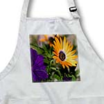 click on Spring Flowers Sunset Colors Violet Petunia Orange Gerber Daisy II to enlarge!