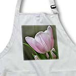 click on Sweet Pink Tulip Flower - Floral Photography to enlarge!